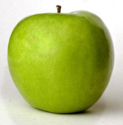 vocne-sadnice-jabuke-greni-smit-granny-smith