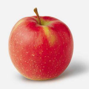 vocne-sadnice-jabuke-jonagold
